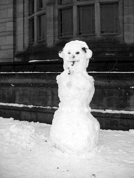 snehulak skotsky